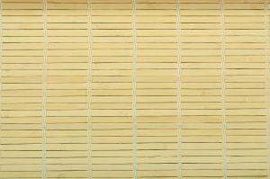 ,Bambusová rohož na stěnu 100x200 Přírodní